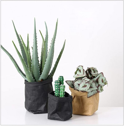 Bolsas de Papel Kraft decorativas
